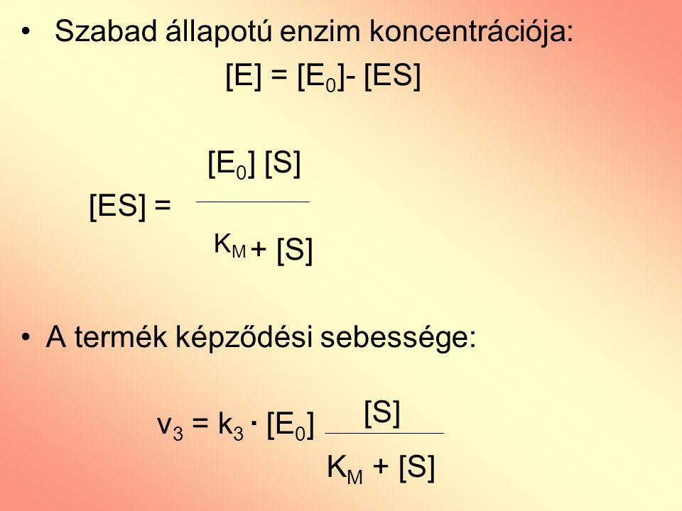 Szabad állapotú enzim koncentrációja: [E] = [E0]- [ES] [E0] [S] [ES] =